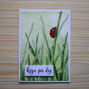 Kort med en nyckelpiga som klättrar bland grässtrån som är blöta av dagg. Texten 'krya på dig' är stämplad i nedre vänstra hörnet.